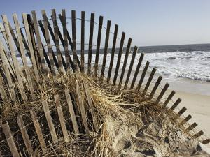 A Sand Fence Used to Control Dune Erosion by Stephen St. John