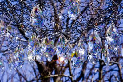 Decorative Crystals Sparkle as Prisms in the Sunlight by Stephen St. John