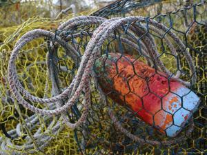 Patterns and Colors of Vintage Crab Traps and Floats by Stephen St. John