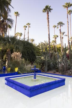 Fountain, Jardin Majorelle, Owned by Yves St. Laurent, Marrakech, Morocco, North Africa, Africa by Stephen Studd