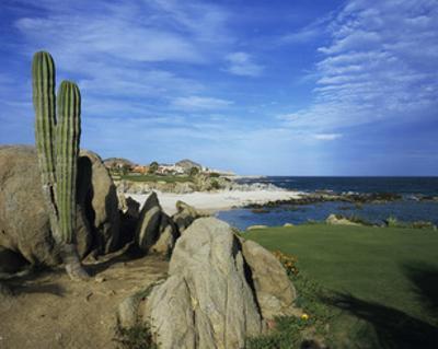 Cabo del Sol Golf Club, Hole 17