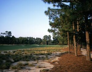 Pinehurst Golf Course No. 2, Hole 12 by Stephen Szurlej
