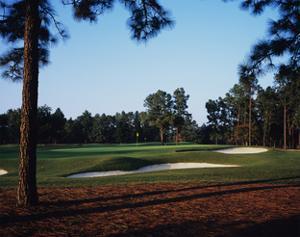 Pinehurst Golf Course No. 2 by Stephen Szurlej