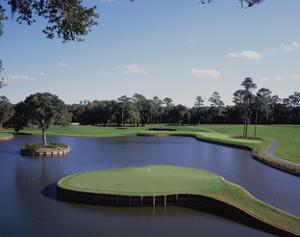 TPC Sawgrass the Stadium Course, Hole 17 by Stephen Szurlej