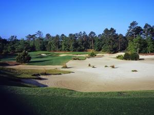 True Blue Golf Plantation by Stephen Szurlej