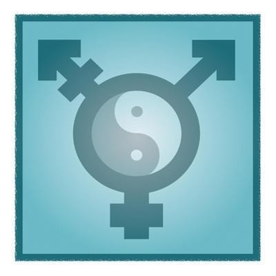 Transgender Balance, Conceptual Artwork