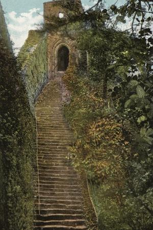 https://imgc.allpostersimages.com/img/posters/steps-to-the-keep-carisbrooke-castle_u-L-PP9Q1X0.jpg?p=0