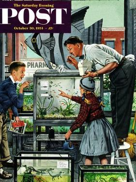 """Fish Aquarium"" Saturday Evening Post Cover, October 30, 1954 by Stevan Dohanos"