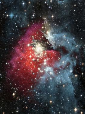 Gas Nebula - Deep Space by Steve Allen