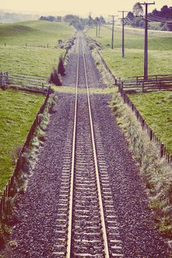 Old Train Line by Steve Allsopp