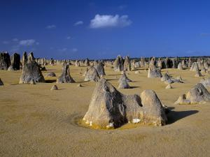 Limestone Pillars in the Pinnacles Desert, Nambung National Park, Western Australia, Australia by Steve & Ann Toon