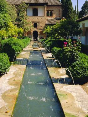 Generalife Gardens, the Alhambra, Granada, Andalucia, Spain, Europe by Steve Bavister