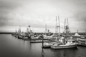 Westport Harbor No 1 by Steve Bisig