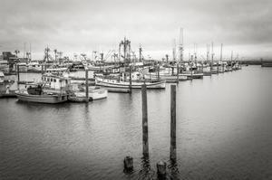 Westport Harbor No 3 by Steve Bisig