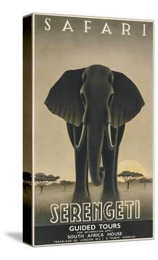 Serengeti by Steve Forney