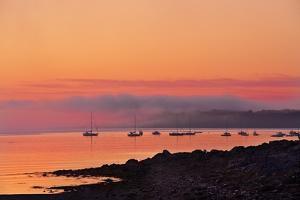 Acadia Dawn by Steve Gadomski