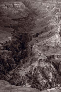 Bright Angel Canyon Grand Canyon National Park BW by Steve Gadomski