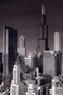 Chicago Loop Towers BW by Steve Gadomski