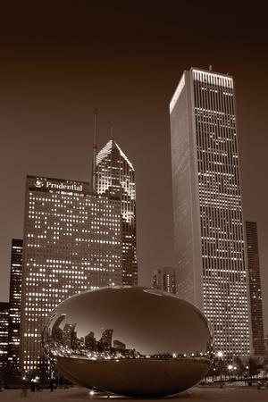 Chicagos Millennium Park BW