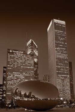 Chicagos Millennium Park BW by Steve Gadomski