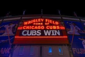 Cubs Win by Steve Gadomski