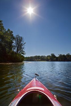 Kayak Morning by Steve Gadomski