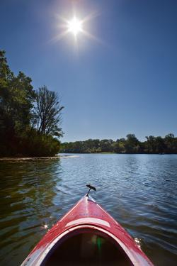 Kayak Morning by Steve Gadomski