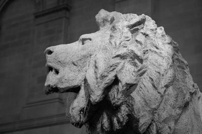 Lion of the Art Institute Chicago BW by Steve Gadomski