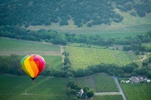 Napa Valley Aloft by Steve Gadomski