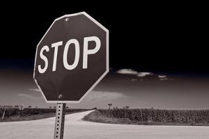 Rural Stop Sign BW by Steve Gadomski