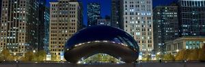 The Bean At Millennium Park Chicago by Steve Gadomski