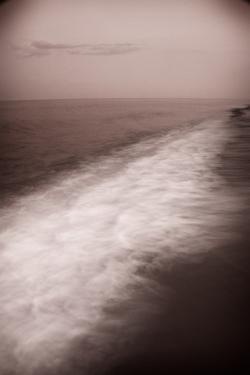 Wave Form by Steve Gadomski