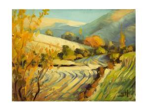 After Harvest by Steve Henderson