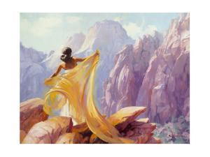 Dream Catcher by Steve Henderson