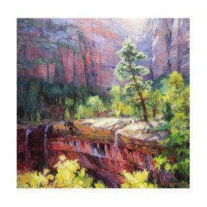Last Light in Zion by Steve Henderson