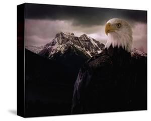 Eagle Mountain by Steve Hunziker