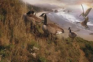 Golden Geese by Steve Hunziker