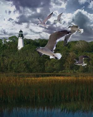 Gullage Light II by Steve Hunziker