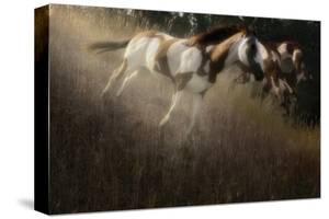 Running Paint by Steve Hunziker