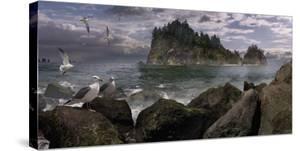 Seastack Gullage by Steve Hunziker