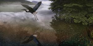 Taking Flight by Steve Hunziker