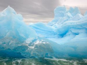 Iceberg, Western Antarctic Peninsula, Antarctica by Steve Kazlowski