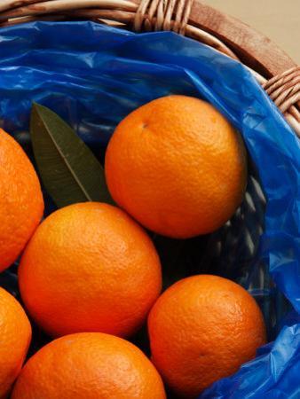 Basket of Oranges, Greece by Steve Outram