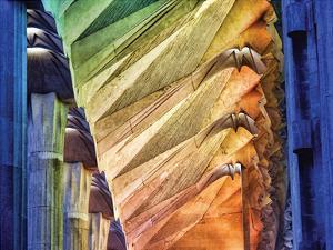 Colors of the Sagrada Familia by Steve Pearlman