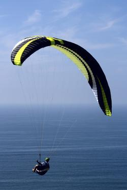 California, San Diego. Hang Glider Flying at Torrey Pines Gliderport by Steve Ross
