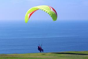 California, San Diego, Torrey Pines Gliderport. Hang Gliders Landing by Steve Ross