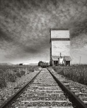 End of the Line by Steve Silverman