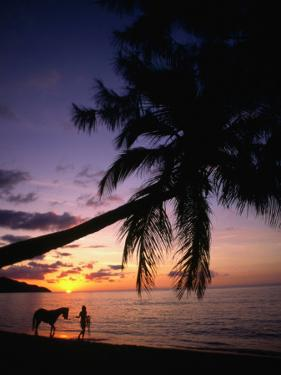 Horse and Rider Take an Easy Stroll Along Cane Bay in St Croix by Steve Simonsen