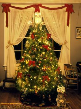 Decorated Christmas Tree Displays in Window, Oregon, USA by Steve Terrill