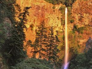Evening Light on Multnomah Falls by Steve Terrill